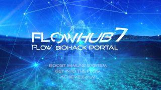 ThumbFlowHub7 presentation
